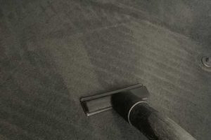 Teppichreinigung